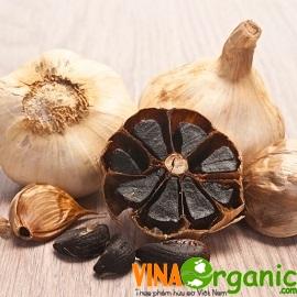 Tỏi đen (Black garlic) là gì?