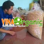 Sản phẩm đậu nành sấy giòn VinaOrganic