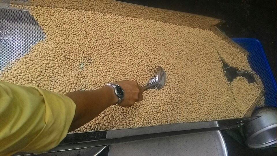 May rang dau nanh say gion dried soybean machines