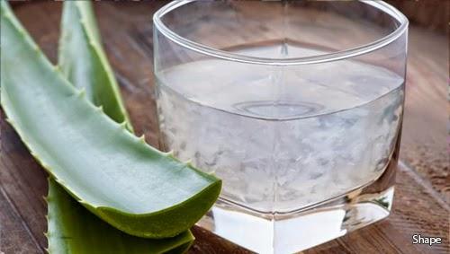 Công nghệ sản xuất nước mủ trôm nha đam VinaOrganic