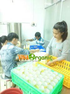 Công nghệ sản xuất Trà sữa đóng chai VinaOrganic