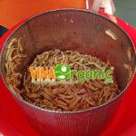snack-chan-nam-vinaorganic