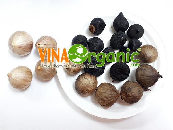 Tỏi đen VGarlic - Món quà ý nghĩa cho sức khỏe người thân
