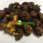 nam huong say vinaorganic (2)